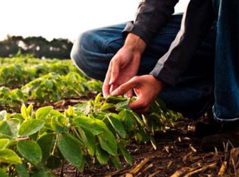 Farmer Education Drive HPM India